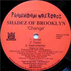 Shadez Of Brooklyn - Change / When It Rains It Pours (Survival Warz!) download flac mp3