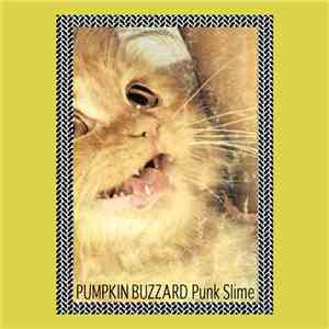 Pumpkin Buzzard - Punk Slime download flac mp3